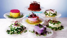 Le salad cakes, nuovo amore in Giappone
